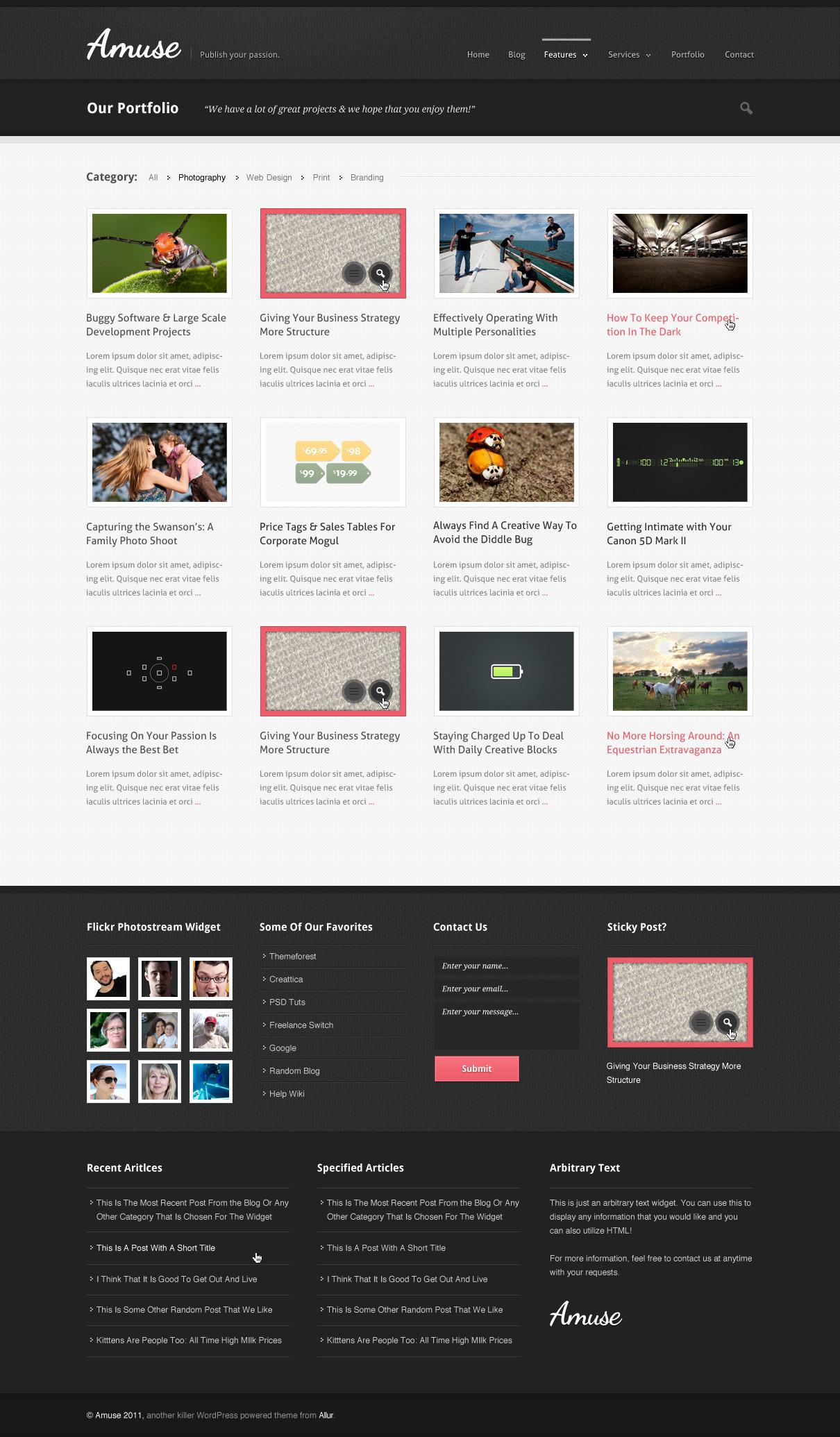 Amuse: A WordPress Business & Portfolio Theme