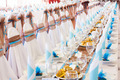 table set for wedding or another catered event dinner  - PhotoDune Item for Sale