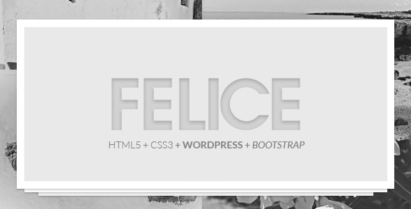 Felice Theme - 2 in 1 (One Page & Multi Page)