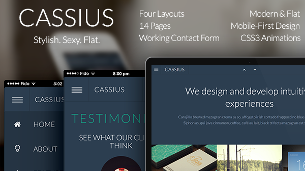 Cassius - Modern & Flat Multi-Purpose Template
