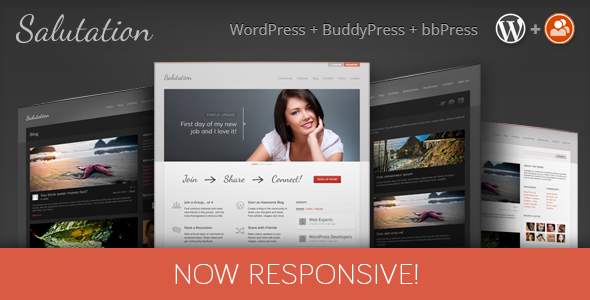 View Live Demo for this BuddyPress Theme
