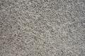 Texture - Concrete 4 - PhotoDune Item for Sale