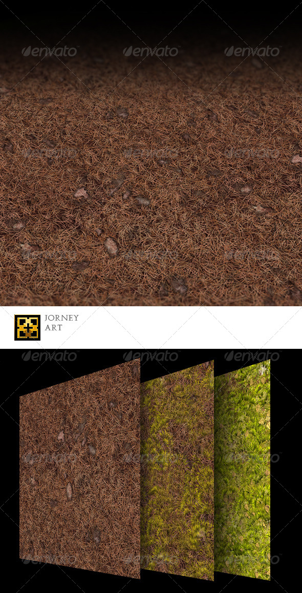 3DOcean Forest Ground Texture Collection 5647287