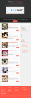 02_grid_spot_home_page.__thumbnail