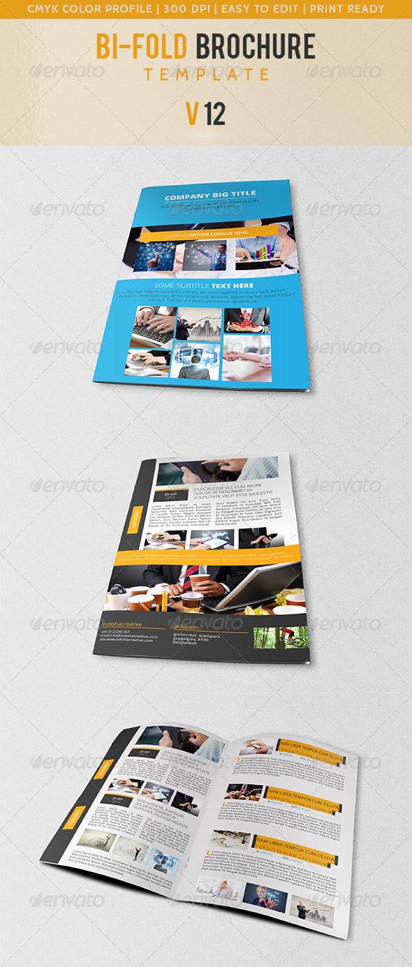 GraphicRiver Bi-Fold Corporate Brochure V-12 5660001