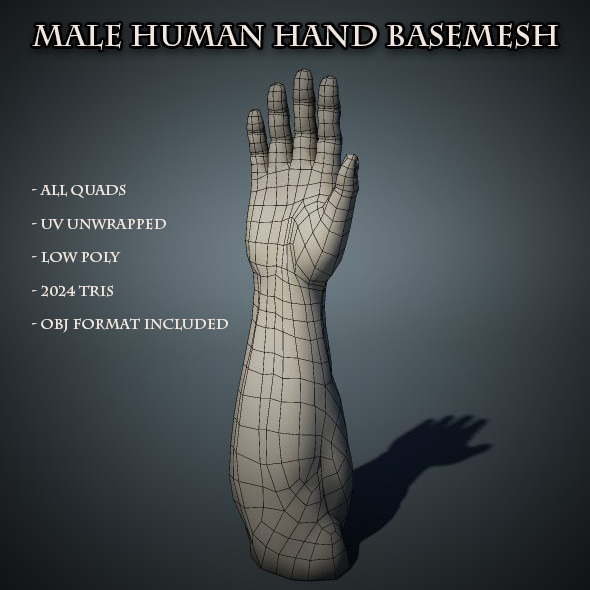 3DOcean Human Male Hand Base Mesh 5660050