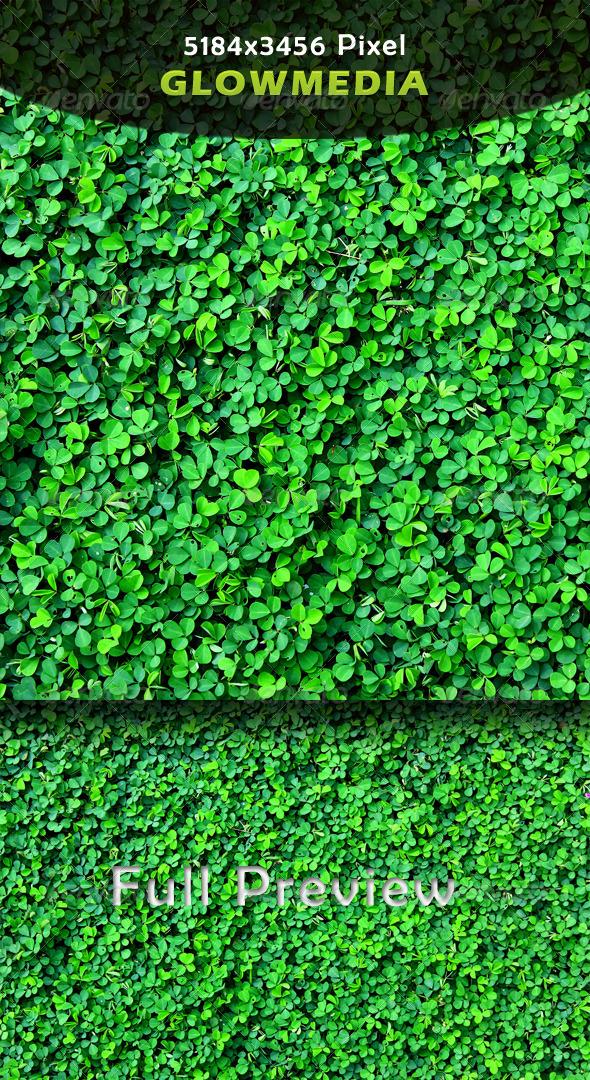 GraphicRiver Grass 5660104
