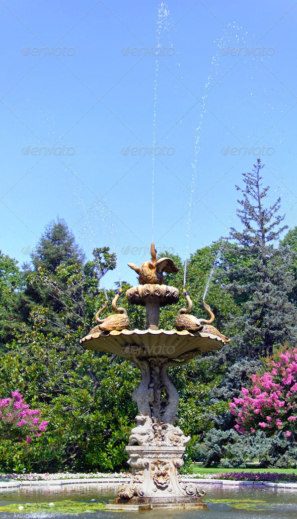 Fountain - Stock Photo - Images