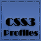 CSS3 Member Profiles with Animated Progress Bars - CodeCanyon Item for Sale