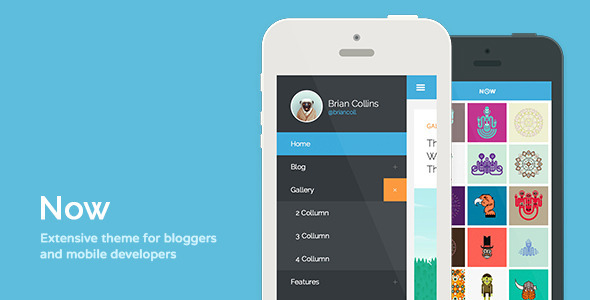 ThemeForest Now Extensive Theme For Bloggers & Developers 5668904