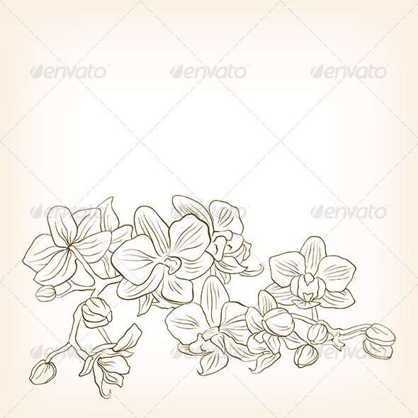 GraphicRiver Abstract Floral Vector Illustration for Design 5673852