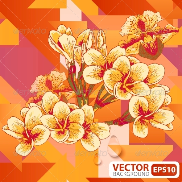 GraphicRiver Flowers on a Geometric Background 5673963
