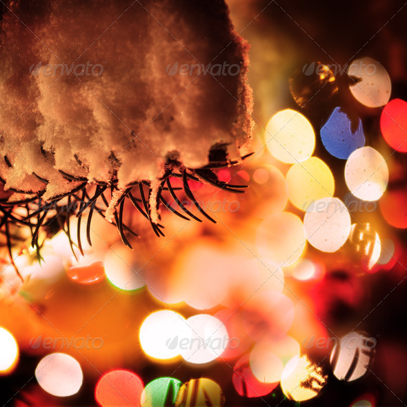 Outdoor chrismas tree - Stock Photo - Images
