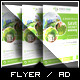 Renewable Energy Solution Flyer - GraphicRiver Item for Sale