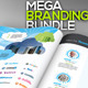 SocialBiz : Social Media ID Mega Branding Pack - GraphicRiver Item for Sale