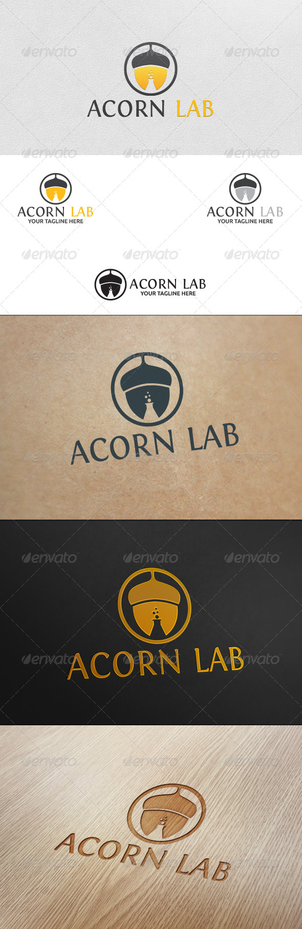 Acorn Lab Logo Template