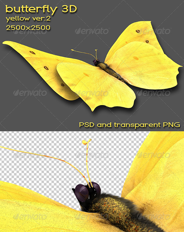 GraphicRiver Butterfly 5682106