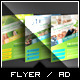 Energy Consultancy Flyer - GraphicRiver Item for Sale