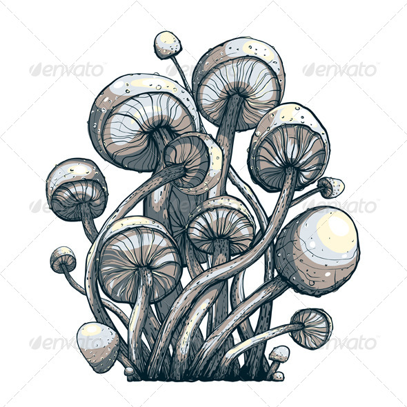 GraphicRiver Cramped Toadstool Mushrooms Composition 5684815