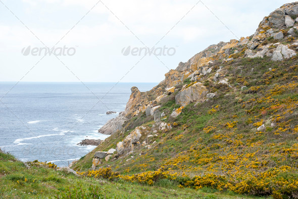 Cies islands natural park, Galicia - Stock Photo - Images