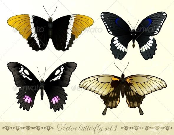 GraphicRiver Vector Butterflies Set 5689360