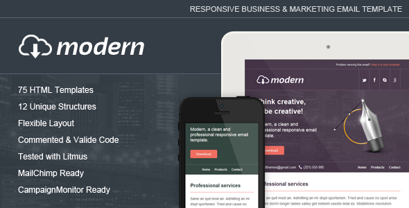 ThemeForest Modern Responsive Email Template 5705670