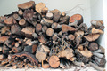 Pile of firewood - PhotoDune Item for Sale
