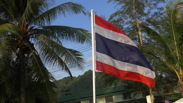 Download Thailand Flag nulled download