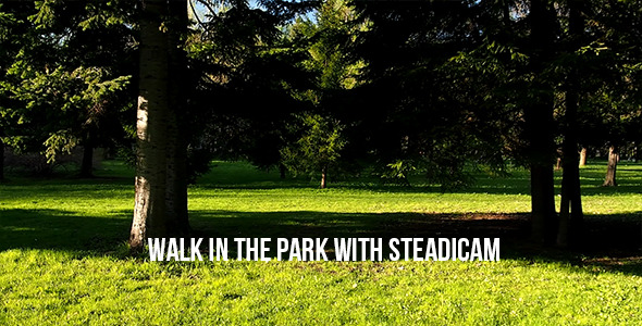 Walk In The Park With Steadicam