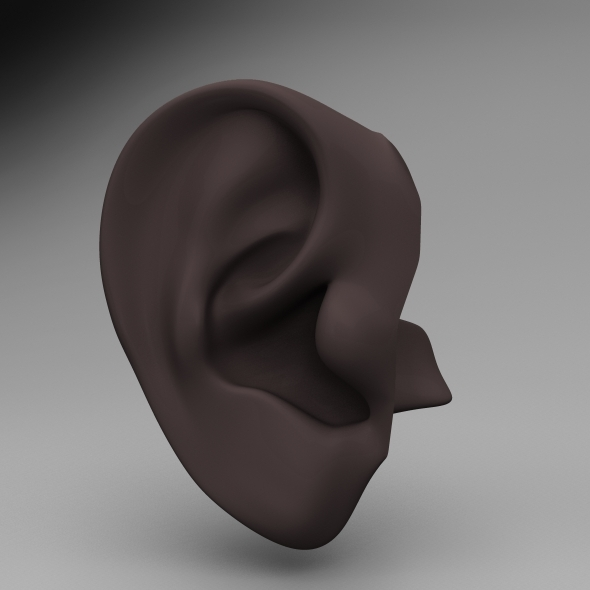 Ear - 3DOcean Item for Sale
