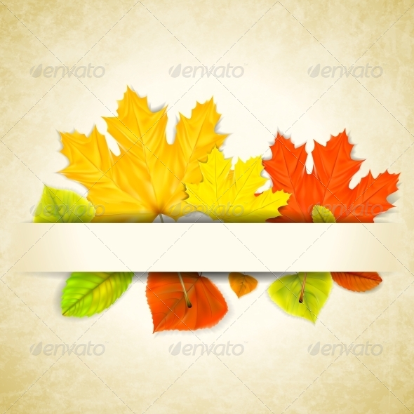 GraphicRiver Autumn Leaves on Scratched Paper Background 5715593