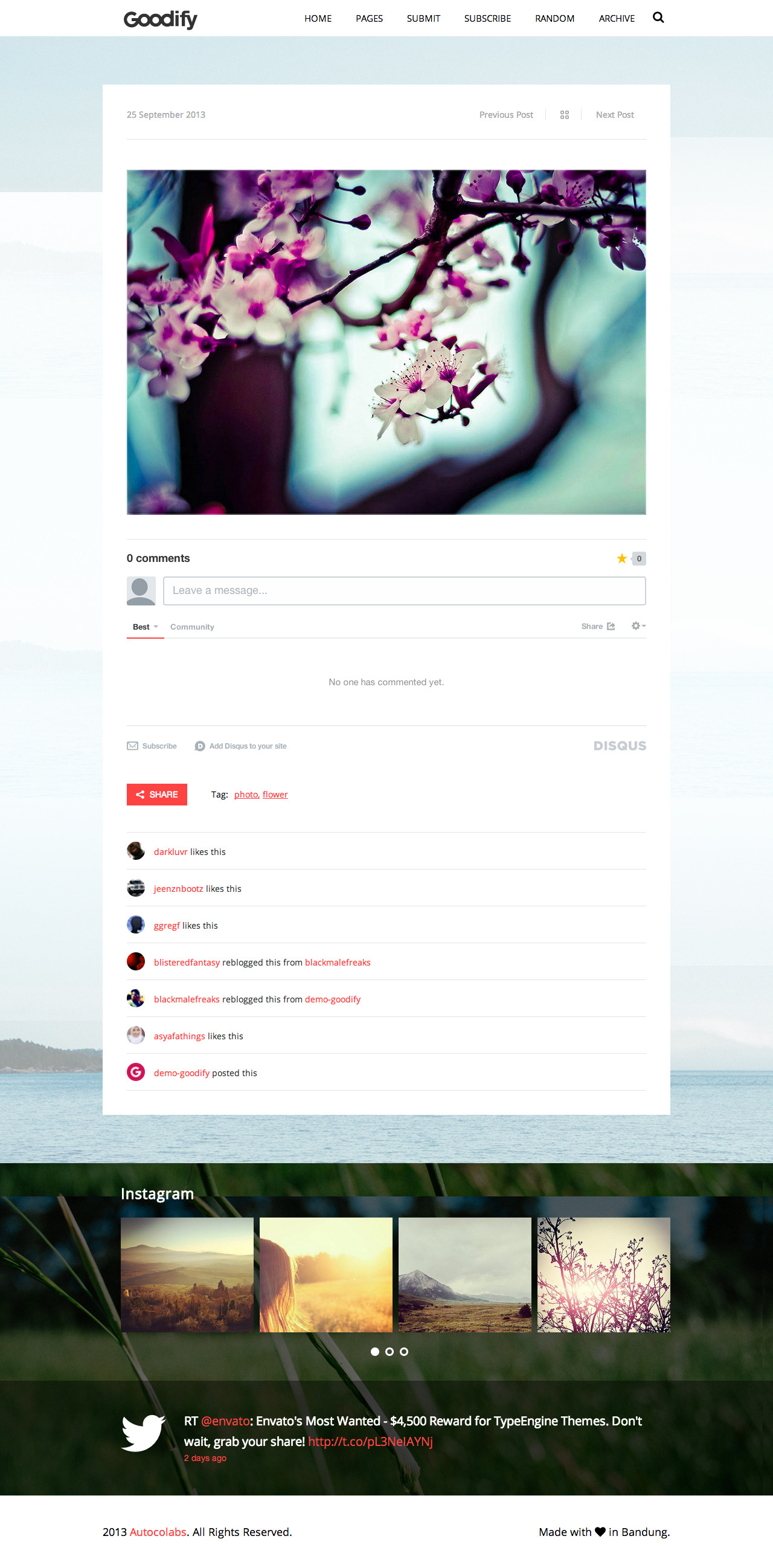 Goodify - Responsive Tumblr Portfolio Theme - GOODIFY - Permalink Page