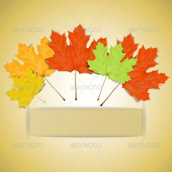 GraphicRiver Colorful Autumn Leaves with Place for your Text 5735836
