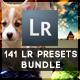 141 Lightroom Pro presets - GraphicRiver Item for Sale