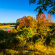 Late Summer Clear Sky - VideoHive Item for Sale
