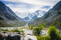 Mountain Beluha. Glacier. Bushes - PhotoDune Item for Sale