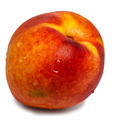 Fresh Nectarine - PhotoDune Item for Sale