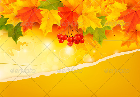GraphicRiver Autumn Background with Colorful Leaves 5742019