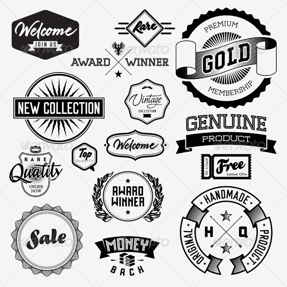 GraphicRiver Vector Vintage Badges 5743299