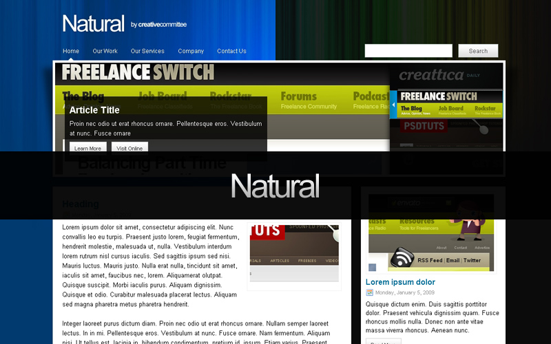 Natural - Example shot of the two theme options