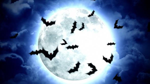 10_HalloweenMoonBats