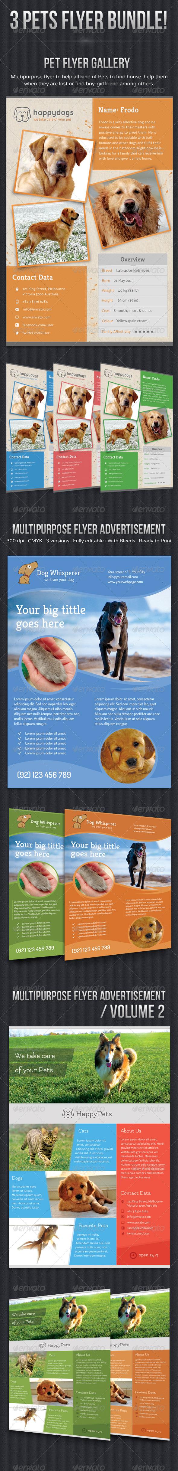 GraphicRiver Pets Flyer Bundle 5802099