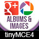 TinyMCE 4 plugin Picasa/Google plus images