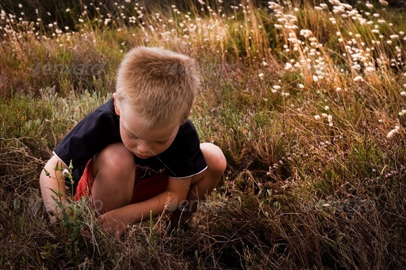 young child in nature - Stock Photo - Images