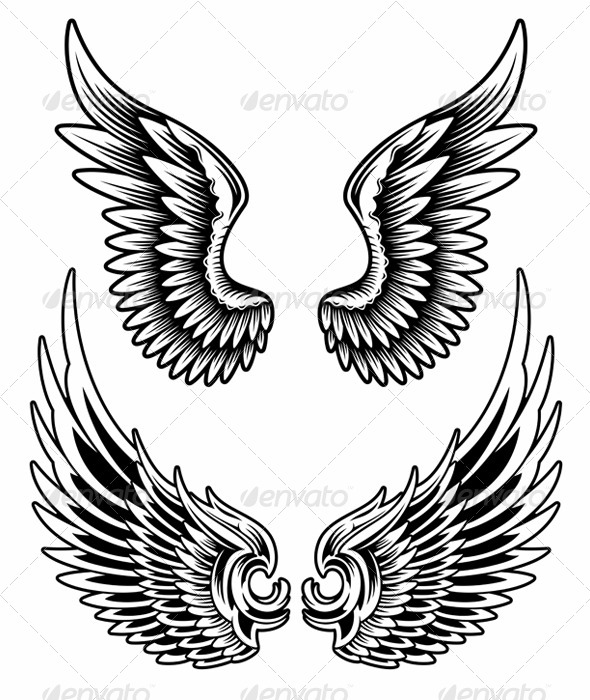 GraphicRiver Wings Set Vector 5816165