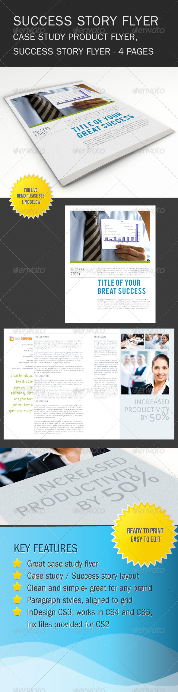 GraphicRiver Success Story Brochure Flyer 602865