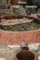 winemaking - PhotoDune Item for Sale