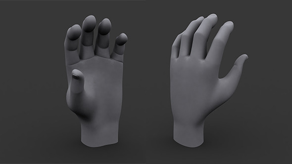 Human Male Hand MP and HP Model - 3DOcean Item for Sale