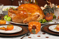 Thanksgiving Turkey - PhotoDune Item for Sale