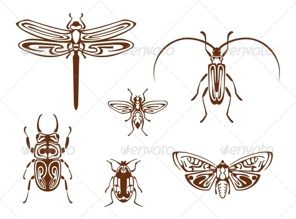 GraphicRiver Insects in Tribal Ornamental Style 5823786